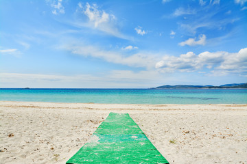 green footpath in a white beach
