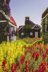 House of greenery and flowers in the park Dubai Miracle Garden