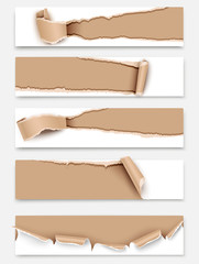 Set of torn paper banners. Vector