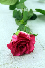 fond rose et coeurs