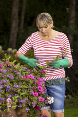 Blond woman pruning or picking flowers