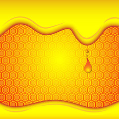 honey drip on honey comb background