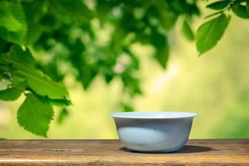 Blue bowl in the garden