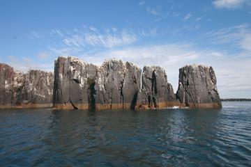isole farne scozia