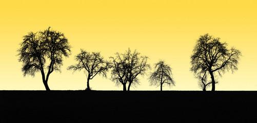 fruit tree silhouettes