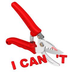 I can (я могу). Концепция изменения заключения