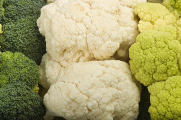 Fresh cauliflower close up on white background