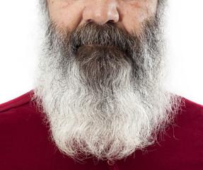 Half senior face with long white beard