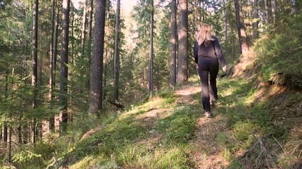 Sexy blonde long hair woman walking alone in forest