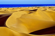 Natural Reserve of Dunes of Maspalomas, in Gran Canaria, Spain - 80484273