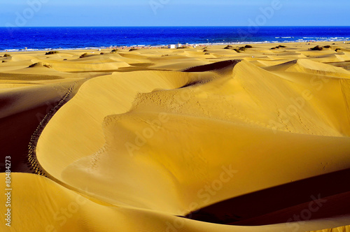 Zdjęcia na płótnie, fototapety, obrazy : Natural Reserve of Dunes of Maspalomas, in Gran Canaria, Spain