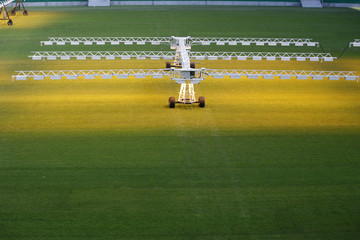Lighting system for growing grass and lawn at stadium