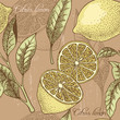 Vintage lemon seamless background - 80486249