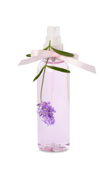 Lavender essential oil spray bottle isolated