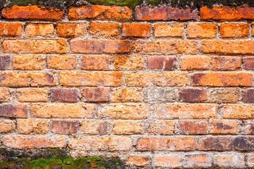 old red brick wall closeup