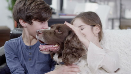 Young boy and girl giving lots of affection to their pet spaniel