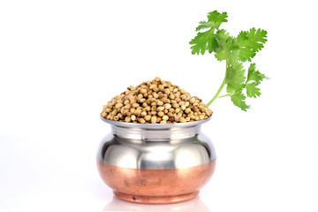 Bowl of coriander seeds and leaves