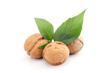 Fresh walnuts isolated on white background