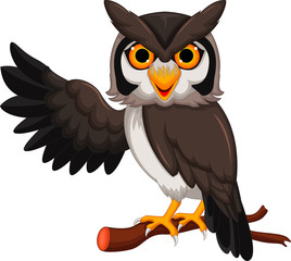 owl cartoon posing
