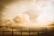 Leinwanddruck Bild - barbed wire fence at sunset