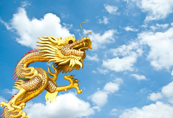 golden Chinese dragon on sky