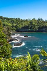 The coast along Onomea Bay, Hawaii