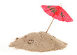 Cocktail Umbrella in Sand Mound with Shells - 80497461