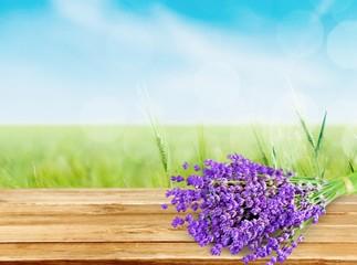 Lavender. Lavender