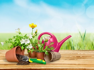 Gardening Equipment. Gardening Tools