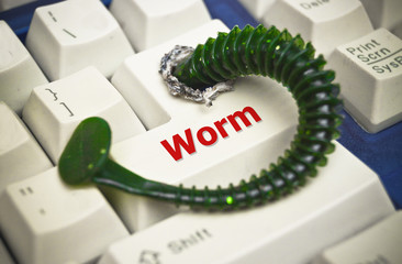 computer worm attacking computer system
