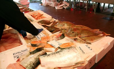 fresh fish in fish market stall in southern Italy