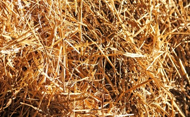 background of straw and dry hay