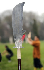 Asian Sabre during the sporting event