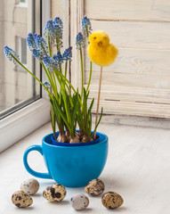 Muscari in blue cup and easter egg
