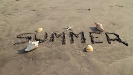 Summer Beach Banner Erased by Wave
