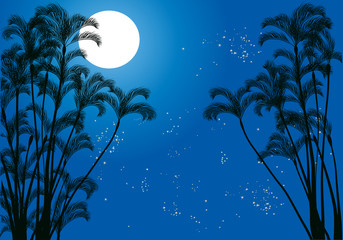 palm tree silhouettes under moon