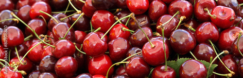 canvas print picture Juicy ripe cherries