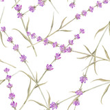 Watercolor pattern with Lavender.