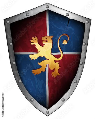 ornamental shield - 80509889