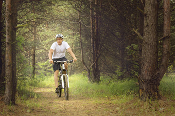 Recreational biking in sunny forest