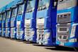 Spedition, viele blaue Laster  parken in einer Reihe, Front - 80512846