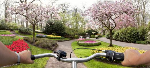 Keukenhof Holland Fahrradlenker