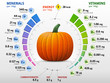 Vitamins and minerals of pumpkin. Winter squash nutrients