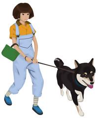 柴犬との犬の散歩 引っ張る