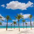 Leinwanddruck Bild - Majorca sArenal arenal beach Platja de Palma