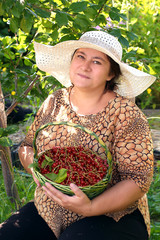 woman with basket of red currant in garden