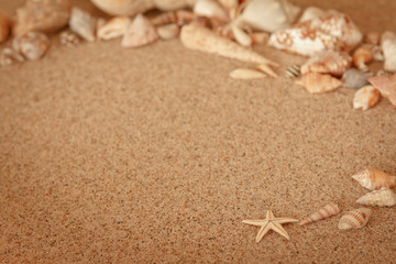 Seestern Muscheln Sand Strand Vintage