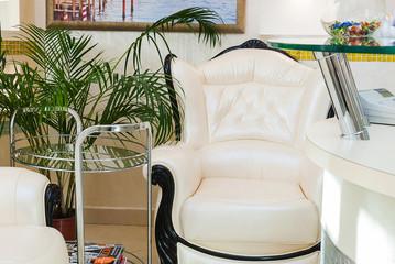 SPA Salon waiting room interior - chair, palm, coffee table