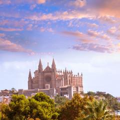 Palma de Mallorca Cathedral de la Seo Majorca