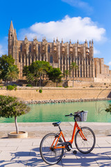 Majorca Palma Cathedral Seu and bicycle Mallorca